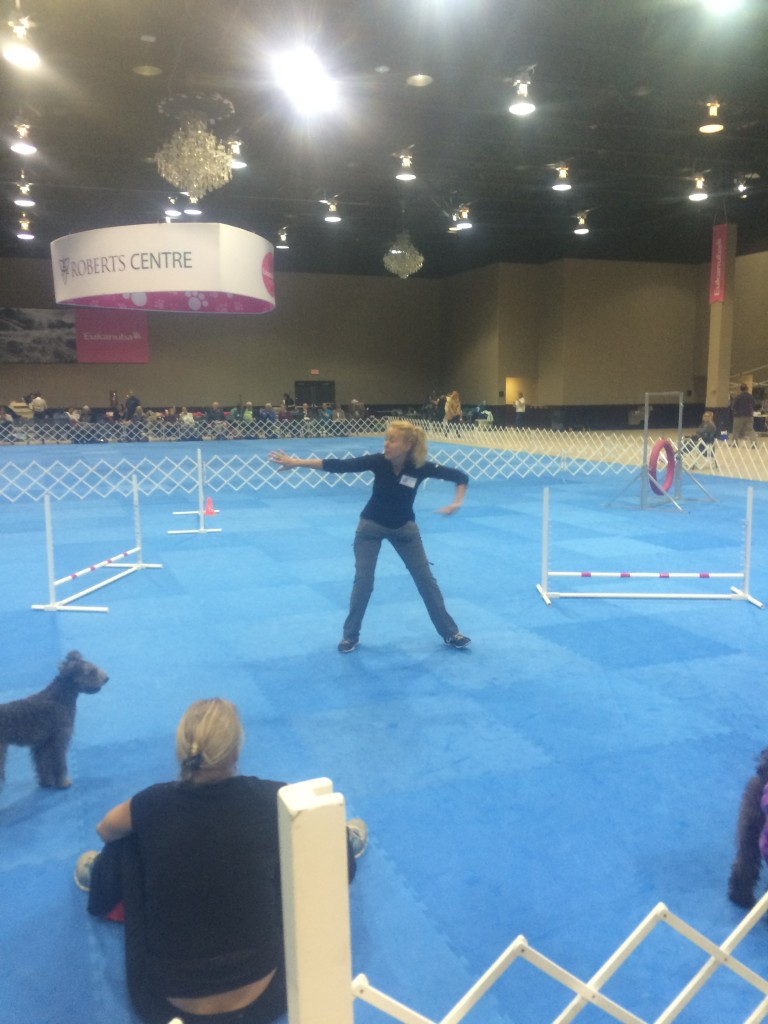 HPCA Agility Got Talent - hey Stacy Lehman I want to learn from you!