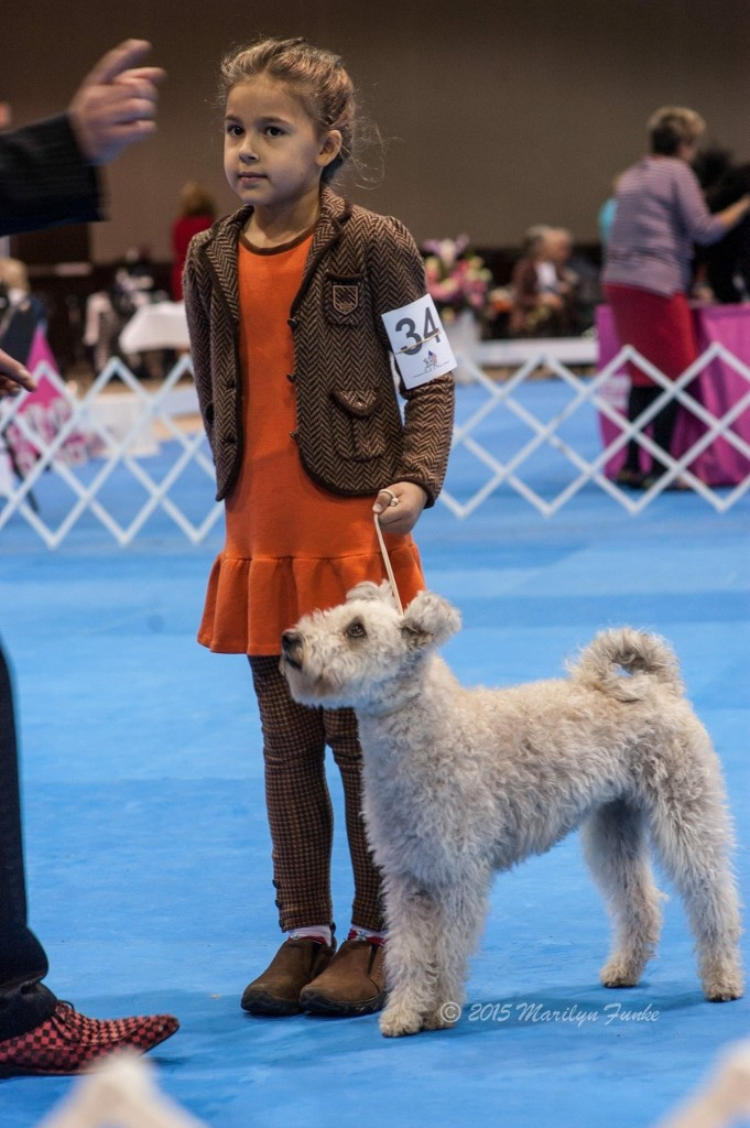 Seven years old Eva Clinton, Junior Handler. Call her if you want to learn some tricks about superior dg show handling