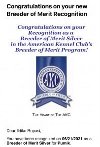 """I have been received 'Breeder of Merit Silver"""" recognition from the AKC."""
