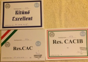 Excellent 2 Res. CACIB good job Agyag!