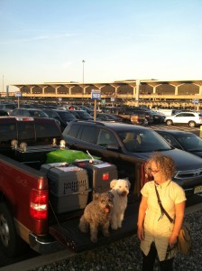a truck load of stuff and dogs back from Hungary and ready to be hauled upstate NY.