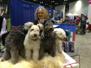 "The ""Eukanuba's Secret"" super models on the table"