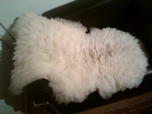 White sheepskin average size2'x3' $95