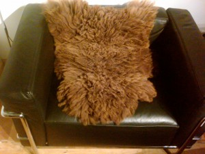 brown or black sheepskin average size approx. 2'x3' $95