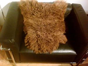 brown or black sheepskin average size approx. 2'x3' $95